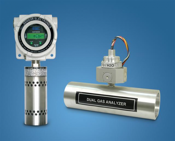 SEC dual gas analyzer for hazardous gas detection